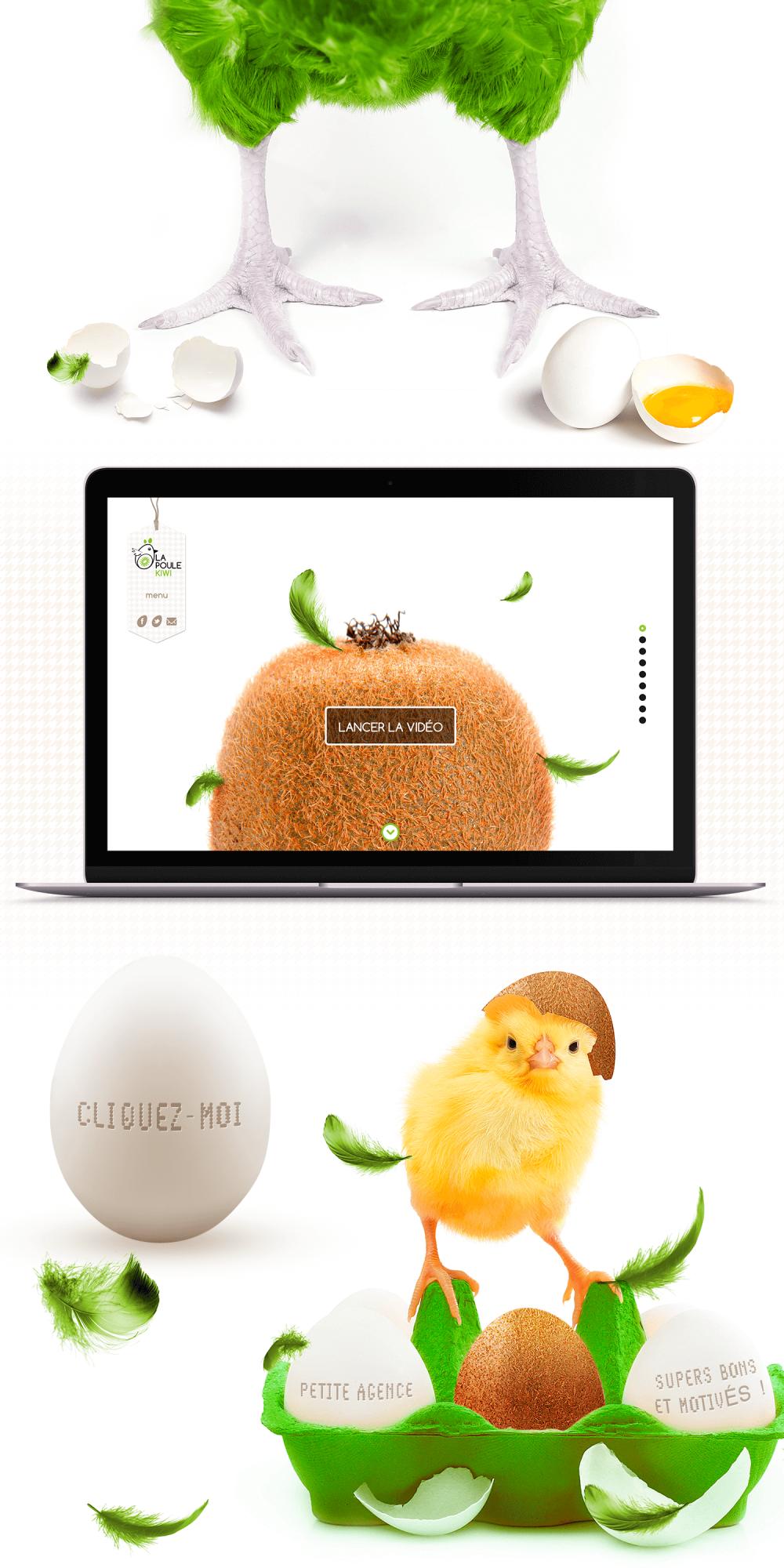 La poule kiwi - Réalisation du site internet et de l